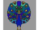 Coloriage Paon colorié par KAKE