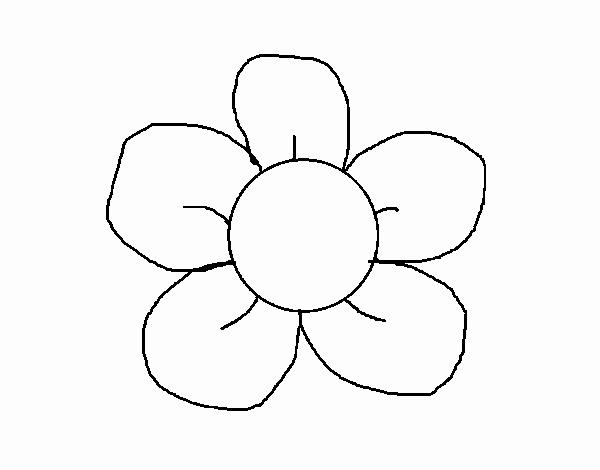 Dessin de fleurs a 5 petales colorie par membre non inscrit le 01 de mai de 2015 - Dessin de fleur facile ...