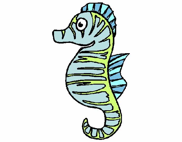Cheval de mer
