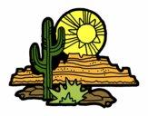 Désert du Colorado