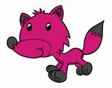 Bébé coyote