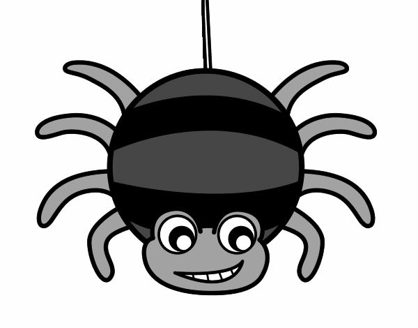 dessin de araign e rayures colorie par membre non. Black Bedroom Furniture Sets. Home Design Ideas