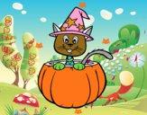 Chaton Halloween