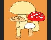 Coloriage Champignons colorié par KAKE2