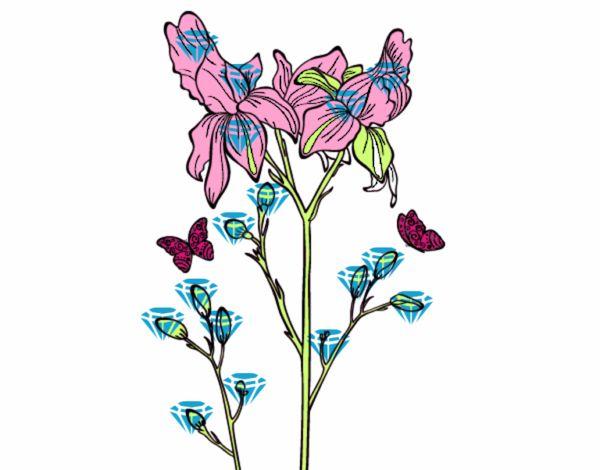 Dessin de fleur des iris colorie par membre non inscrit le 25 de janvier de 2016 - Coloriage fleur iris ...