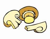 Toris champignon