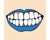 Bouche et dents