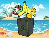 Recyclage organique
