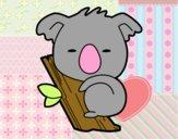Bébé Koala