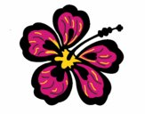 Fleur hawaïenne