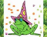 Coloriage Magicien transformé en grenouille colorié par raphael