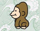 Gorille bébé