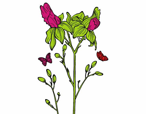 Dessin de fleur des iris colorie par membre non inscrit le 22 de juillet de 2016 - Coloriage fleur iris ...