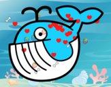 Bébé baleine