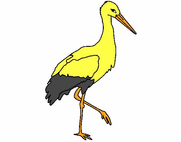 Cigogne 1