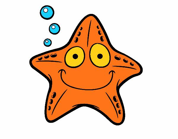 Étoile nautique