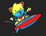 Guépard surfer