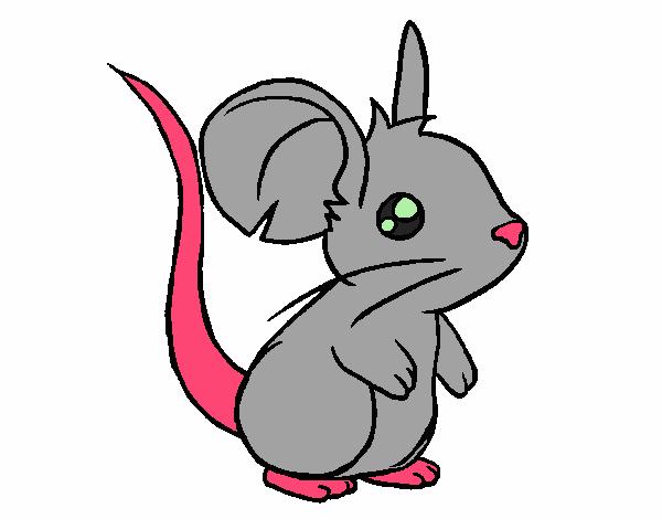 Dessin de petit souris colorie par membre non inscrit le - Dessin sourie ...