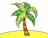 Une palmier
