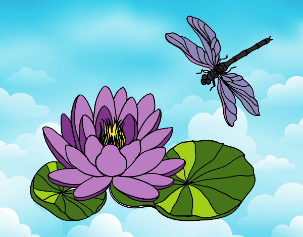 dessin de fleur de lotus colorie par membre non inscrit le 17 de f vrier de 2017. Black Bedroom Furniture Sets. Home Design Ideas