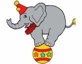 Éléphant sur une balle