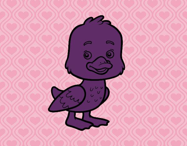Un petit canard