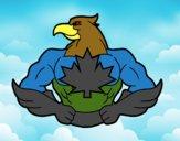 Super oiseau
