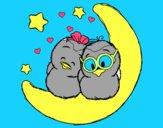 L'amour des oiseaux