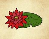 Coloriage Une fleur de lotus colorié par Vickee