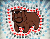 Chien bulldog anglais