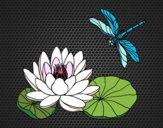 Coloriage Fleur de lotus colorié par KAKE2