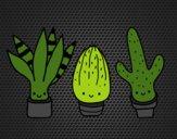 Coloriage Mini cactus colorié par KAKE2