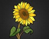 Coloriage Un tournesol colorié par KAKE2