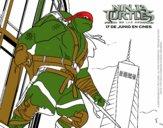 Raphael Ninja Turtles