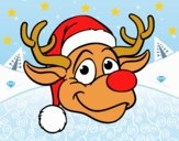 Renne face Rudolph