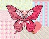 Papillon tropical