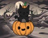 Un chaton d'Halloween