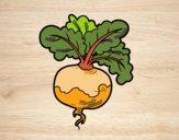 201803/un-navet-aliments-legumes-colorie-par-danielle-99698_163.jpg