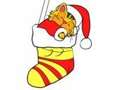 Chaton dormant dans un bas de Noël