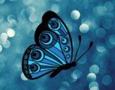 Papillon droite