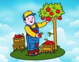Un agriculteur