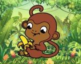 Singe à la banane