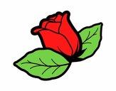 Rose avec des feuilles