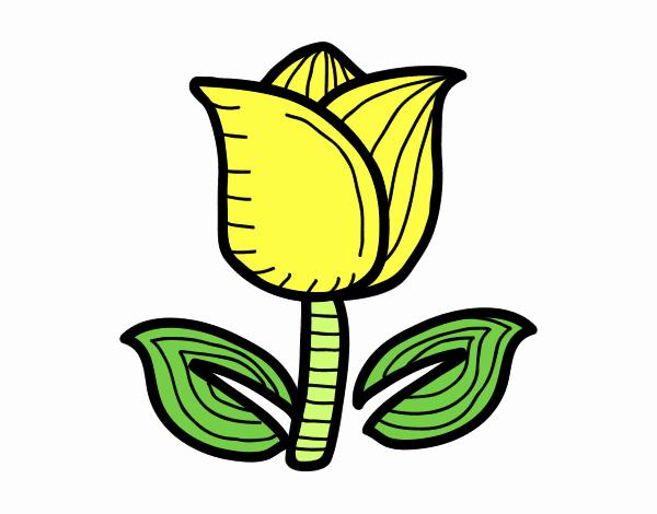 Dessin De Tulipe Colorie Par Membre Non Inscrit Le 02 De Mai De 2018 A Coloritou Com