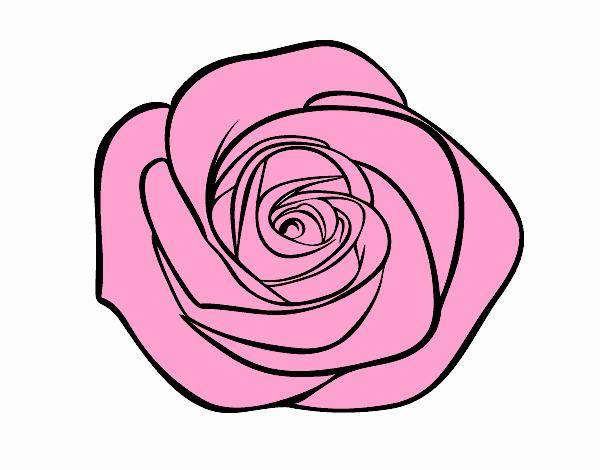 Dessin De Fleur De Rose Colorie Par Membre Non Inscrit Le 30 De
