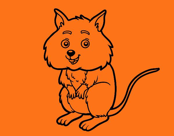 Dessin de Un petit hamster colorie par Membre non inscrit ...
