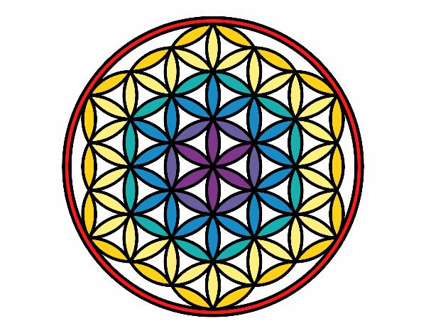 Dessin De Mandala Fleur De Vie Colorie Par Membre Non
