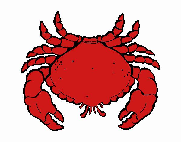 Dessin de Grand crabe colorie par Membre non inscrit le 27 ...