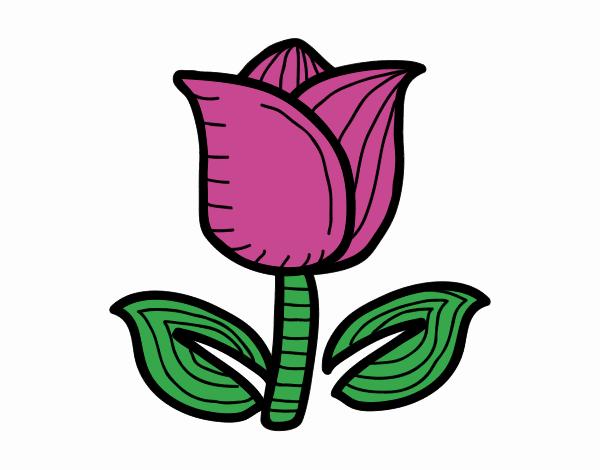 Dessin De Tulipe Colorie Par Membre Non Inscrit Le 27 De Mars De 2020 A Coloritou Com