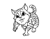 <span class='hidden-xs'>Coloriage de </span>Chat sauvage à colorier